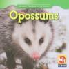 Opossums - JoAnn Early Macken