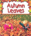 Autumn Leaves - Gail Saunders-Smith