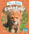 It's a Baby Cheetah! - Kelly Doudna
