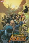 The New Avengers Hardcover Collection Vol. 3 - Brian Michael Bendis, Howard Chaykin, Marc Silvestri, Leinil Francis Yu, Olivier Coipel, Pasqual Ferry, Jim Cheung, Alexander Maleev, Dave McCaig, Alex Maleev