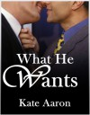 What He Wants - Kate Aaron