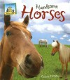 Handsome Horses - Anders Hanson, Cheryl A. Nobens