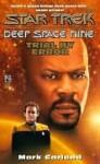 Trial by Error (Star Trek: Deep Space Nine, #21) - Mark Garland