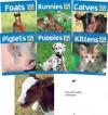 Baby Animals-Lib-6v - Abdo Publishing