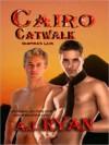 Cairo Catwalk [Vampire's Lair Book 2] - A.J. Ryan