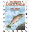 Salmon: Tireless Travelers - Andreu Llamas