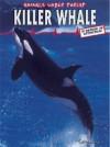 Killer Whale - Carol Inskipp