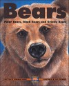 Bears - Deborah Hodge, Adrienne Mason, Nancy Ogle