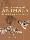 Art Anatomy of Animals - Ernest Thompson Seton