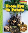From Eye to Potato - Ellen Weiss