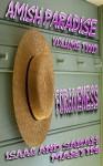 Amish Paradise- Volume 2- Forgiveness - Isaac Martin, Sarah Martin