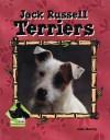 Jack Russell Terriers - Julie Murray