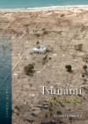 Tsunami - Richard Hamblyn