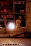 A Glimpse of the Numinous (Paperback) - Jeff Gardiner