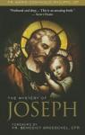 The Mystery of Joseph - Brett Brannen, Benedict J. Groeschel