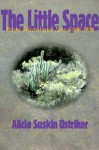 The Little Space: Poems Selected and New, 1968�1998 - Alicia Suskin Ostriker