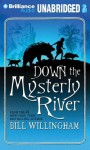 Down the Mysterly River - Bill Willingham, Dick Hill