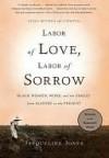 Labor of Love, Labor of Sorrow - Jacqueline Jones