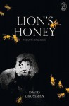 Lion's Honey: The Myth of Samson - David Grossman