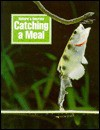 Catching a Meal - Paul Bennett