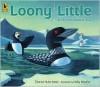 Loony Little: An Environmental Tale - Dianna Hutts Aston, Kelly Murphy