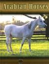 Arabian Horses - Lynn M. Stone