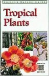 Tropical Plants - Elizabeth Chan, Luca Invernizzi Tettoni