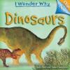 Dinosaurs - Judy Allen