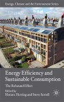 Energy Efficiency and Sustainable Consumption: The Rebound Effect - Horace Herring, Steve Sorrell, David Elliott