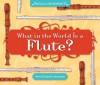 What in the World Is a Flute? - Mary Elizabeth Salzmann, Diane Craig