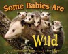 Some Babies Are Wild (Mom's Choice Awards Recipient) - Marion Dane Bauer, Stan Tekiela