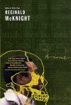 He Sleeps: A Novel - Reginald McKnight