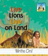 Live Lions Live on Land - Carey Molter