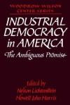 Industrial Democracy in America: The Ambiguous Promise - Nelson Lichtenstein, Lee H. Hamilton