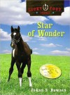 Star of Wonder (Lucky Foot Stables Series #2) - JoAnn S. Dawson