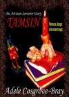 Tamsin: An Artisan-Sorcerer Story - Adele Cosgrove-Bray