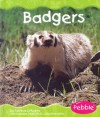 Badgers - Patricia J. Murphy