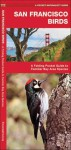 San Francisco Birds: A Folding Pocket Guide to Familiar Bay Area Species - James Kavanagh, Raymond Leung