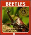 Beetles - Sylvia A. Johnson