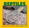 Reptiles: Explore the Fascinating Worlds Of...Alligators and Crocodiles, Lizards, Snakes, Turtles - Deborah Dennard, Jennifer Owings Dewey