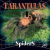 Tarantulas - Jason Cooper