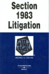 Section 1983 Litigation in a Nutshell (Nutshell Series) - Michael G. Collins