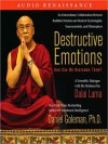 Destructive Emotions: How Can We Overcome Them?: A Scientific Dialogue with the Dalai Lama (MP3 Book) - Daniel Goleman, Ed Levin