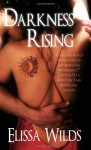 Darkness Rising - Elissa Wilds