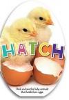 Hatch - Katie Cox