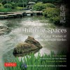 Infinite Spaces: The Art and Wisdom of the Japanese Garden - Julie Moir Messervy, Joe Earle, Sadao Hibi