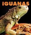 Iguanas - Kathryn Stevens