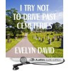 I Try Not to Drive Past Cemeteries (Brianna Sullivan Mysteries, #1) - Evelyn David