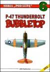 P-47 Thunderbolt Bubbletop - Przemysław Skulski