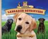 Lovely Labrador Retrievers (Dog Daze) - Pam Scheunemann